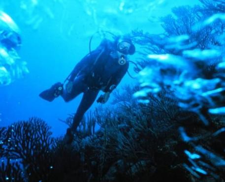 scuba-diver1_4